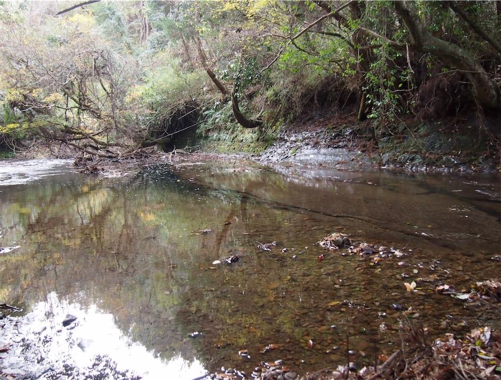 静かな小川がずっと続いています