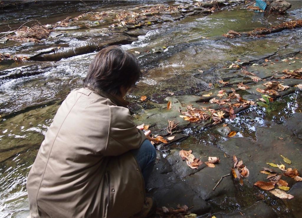 泥岩でできたような川床