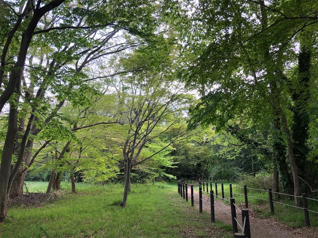 水と緑の回廊