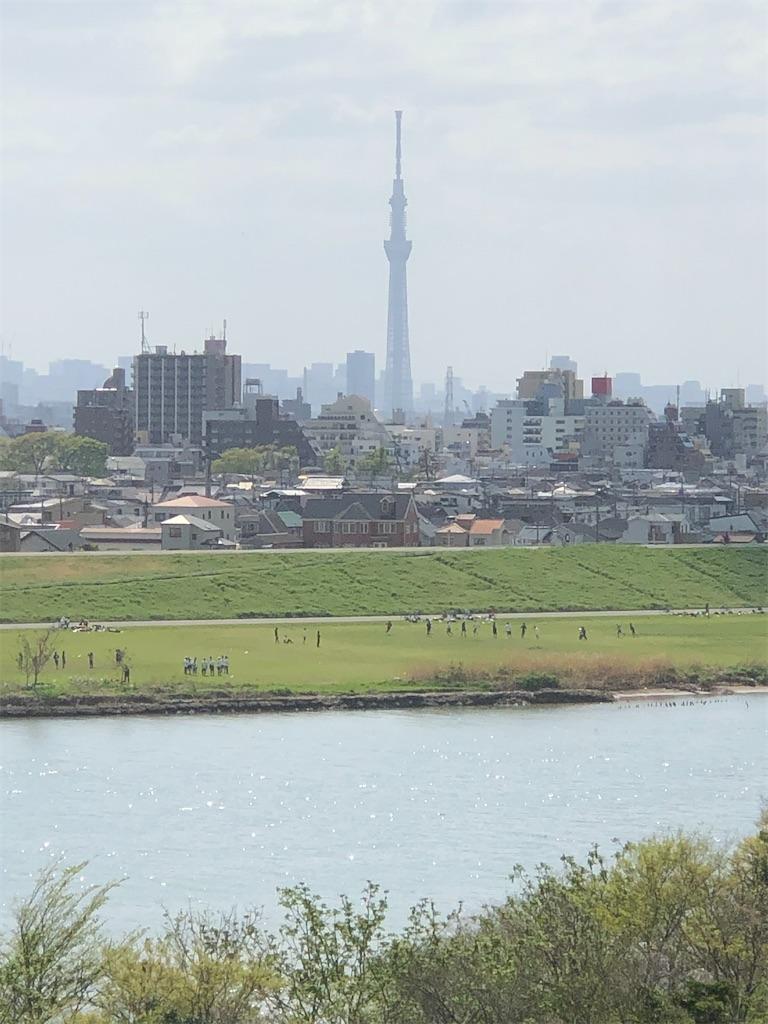 目の前に江戸川とスカイツリー