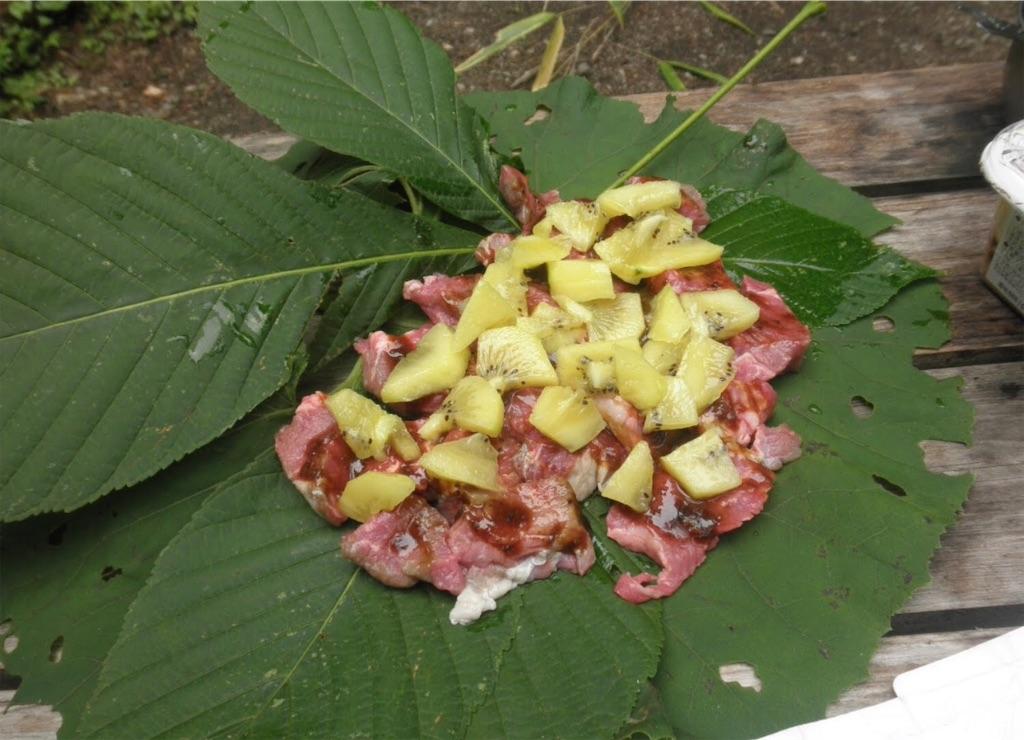 鳥の味噌とフルーツのホウ葉包み焼き