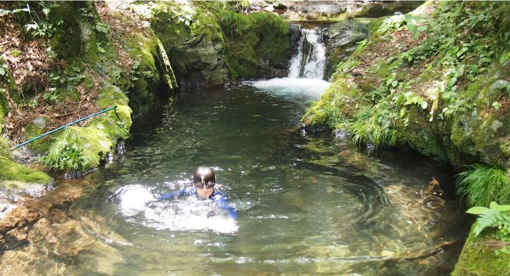 水の中で見る景色も夏ならでは。