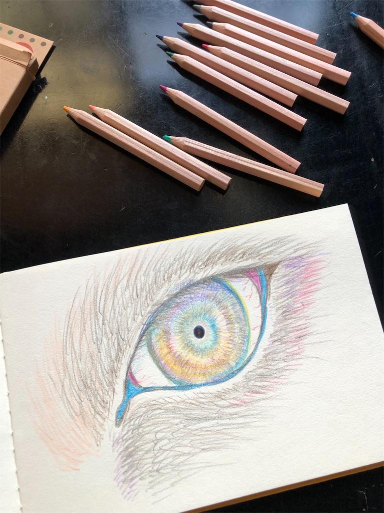 12色の色鉛筆と小さなスケッチブックで。
