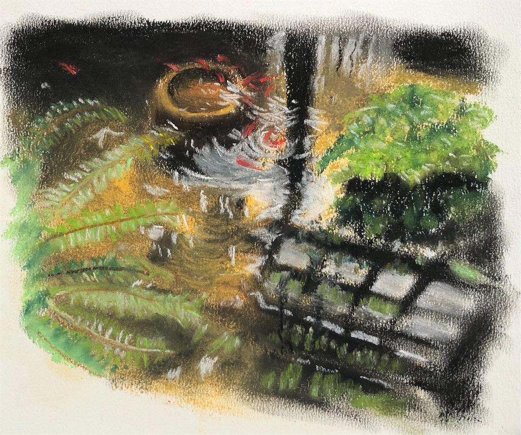 植物園の金魚