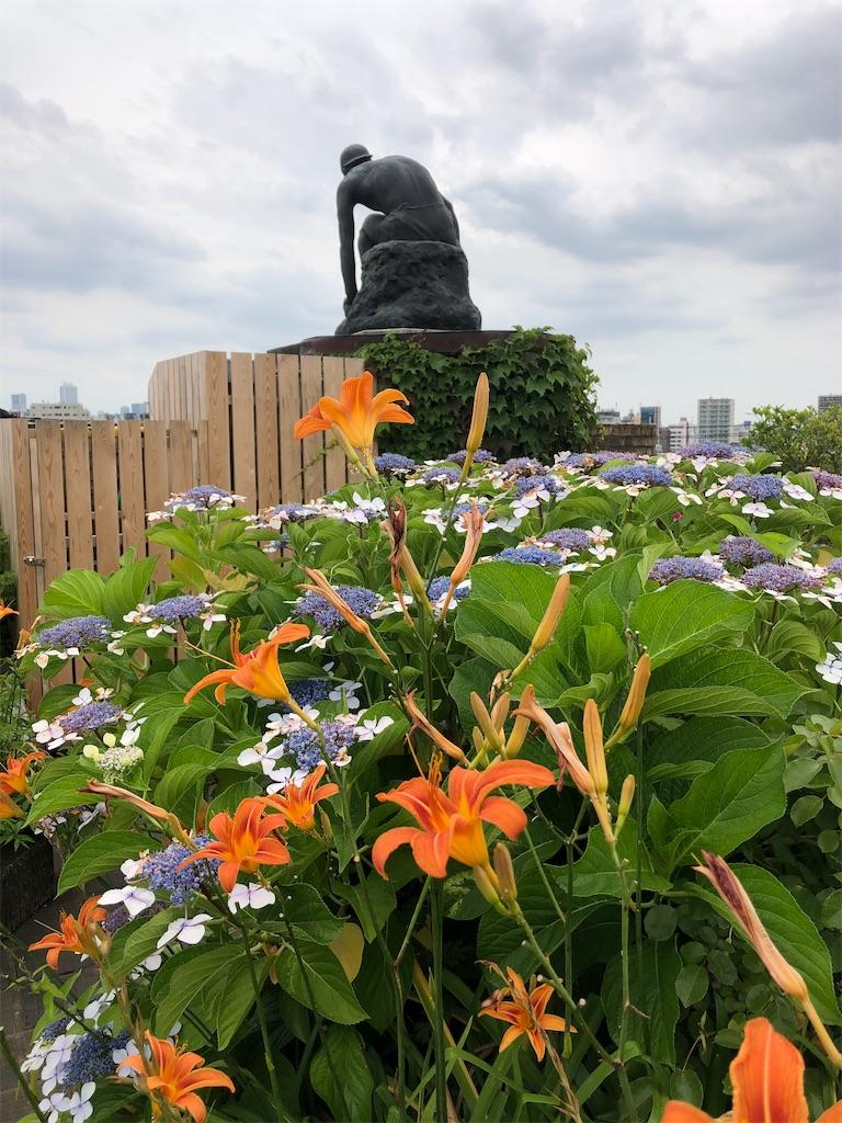 朝倉彫塑館の屋上庭園。