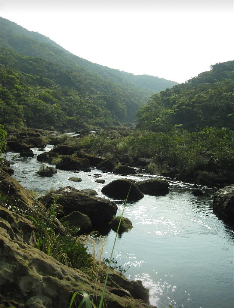 浦内川上流部