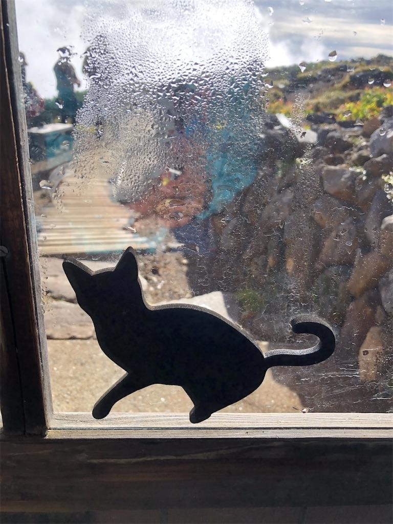 可愛い黒猫が玄関を守っています