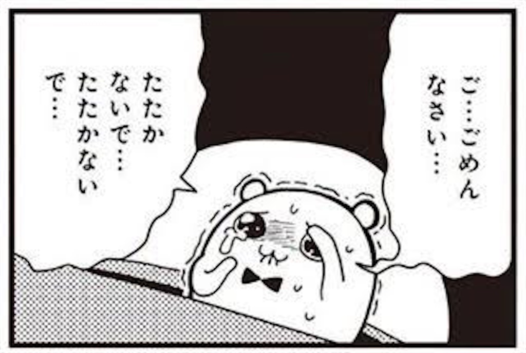 f:id:nekosui222:20200531095728j:image