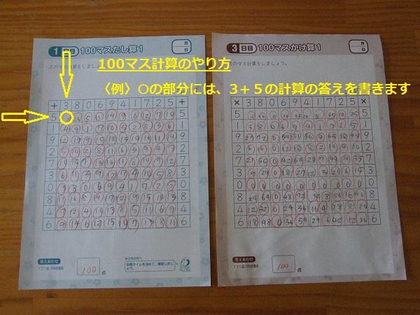 f:id:nekotohina:20170519150422j:plain