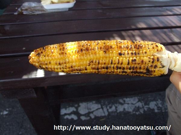 f:id:nekotohina:20170711195916j:plain