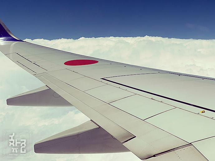 伊丹空港へ