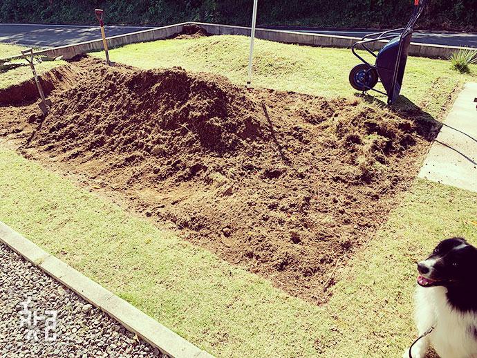 想像以上に大変な芝剥がしの作業