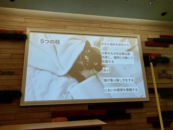 f:id:nekotoongakuto:20210226012908p:plain