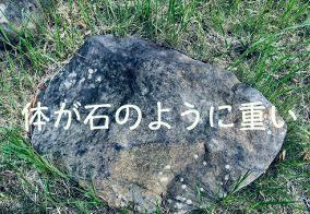 f:id:nekowamegusuri163:20180929151440j:plain