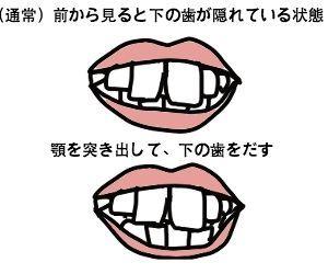 f:id:nekowamegusuri163:20181012125143j:plain