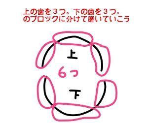 f:id:nekowamegusuri163:20181012160455j:plain