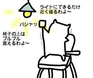 f:id:nekowamegusuri163:20181022121226j:plain