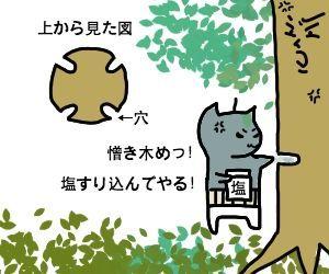 f:id:nekowamegusuri163:20181025091459j:plain