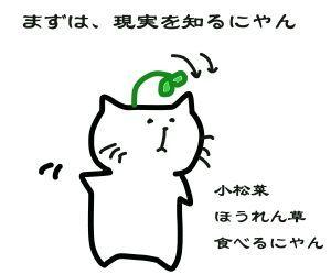 f:id:nekowamegusuri163:20181119141531j:plain