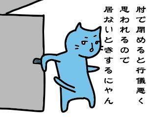 f:id:nekowamegusuri163:20190107104035j:plain