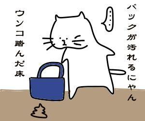 f:id:nekowamegusuri163:20190107111242j:plain