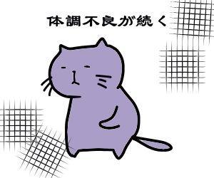 f:id:nekowamegusuri163:20190215141011j:plain