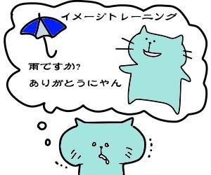 f:id:nekowamegusuri163:20190302131030j:plain