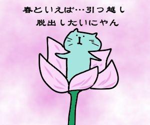 f:id:nekowamegusuri163:20190312103717j:plain