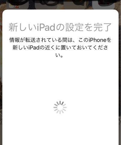 f:id:nekowamegusuri163:20190409104226j:plain