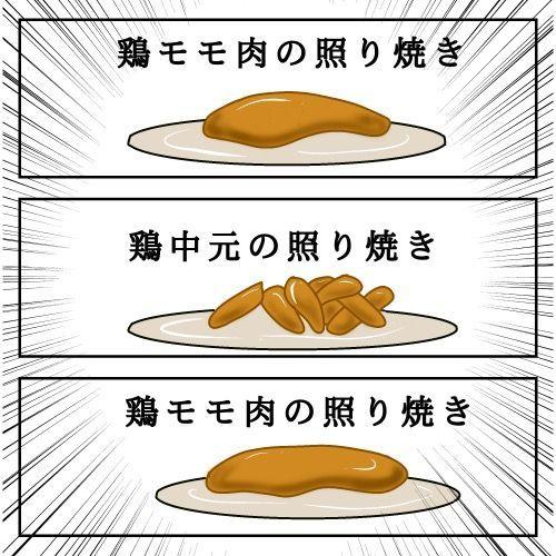 f:id:nekowamegusuri163:20190417110107j:plain