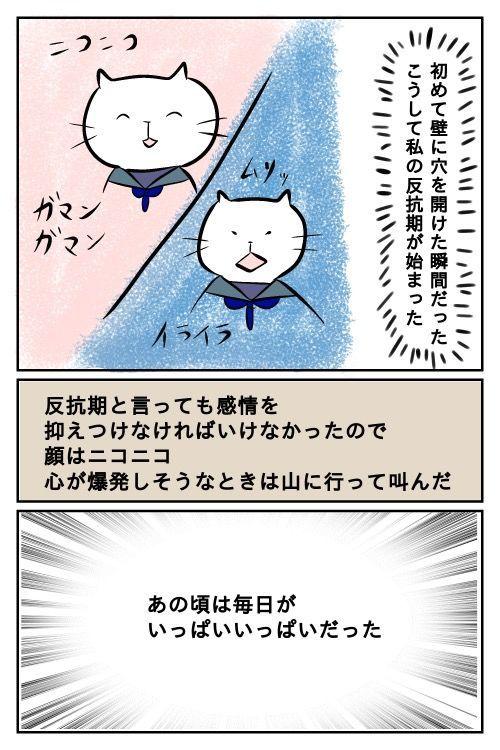 f:id:nekowamegusuri163:20190503123113j:plain
