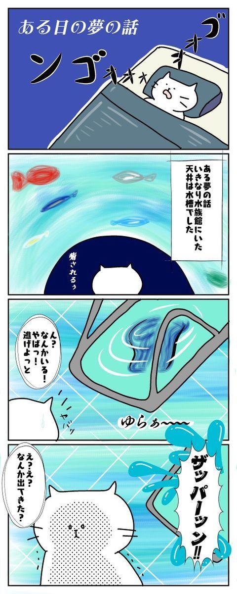 f:id:nekowamegusuri163:20190521213044j:plain