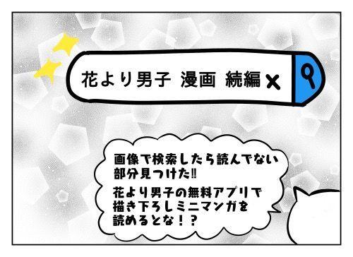 f:id:nekowamegusuri163:20190709151644j:plain