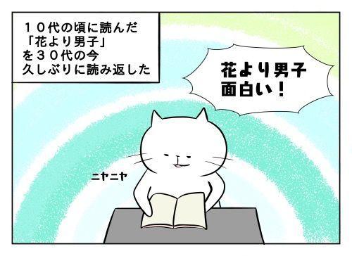 f:id:nekowamegusuri163:20190709151650j:plain