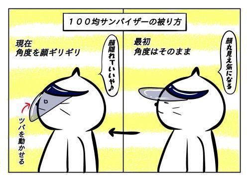 f:id:nekowamegusuri163:20190729140343j:plain