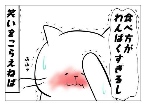 f:id:nekowamegusuri163:20190805130243j:plain
