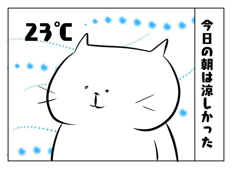 f:id:nekowamegusuri163:20190825125350j:plain