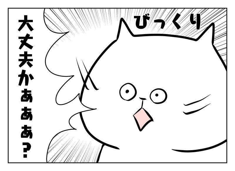 f:id:nekowamegusuri163:20190925152043j:plain