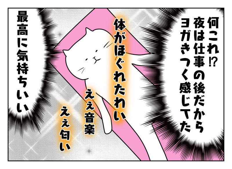 f:id:nekowamegusuri163:20191020134510j:plain