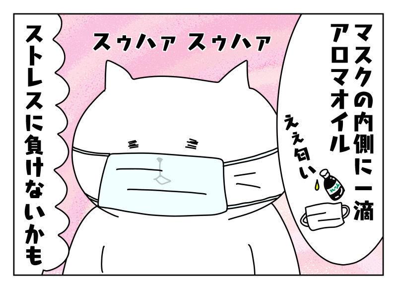 f:id:nekowamegusuri163:20191020134628j:plain