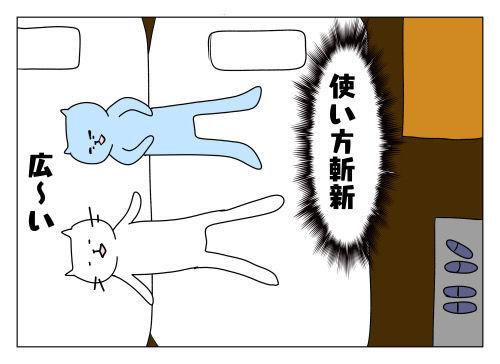 f:id:nekowamegusuri163:20191112161822j:plain