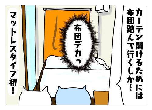 f:id:nekowamegusuri163:20191112161828j:plain