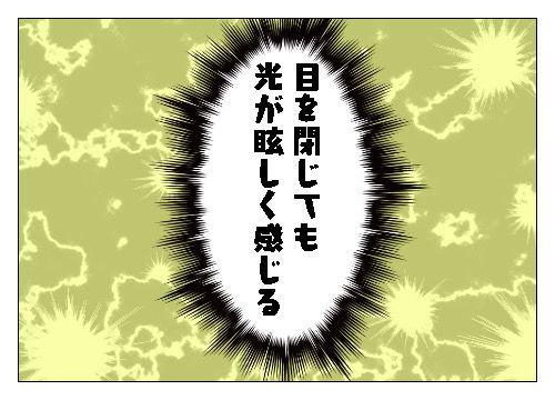 f:id:nekowamegusuri163:20191120152548j:plain