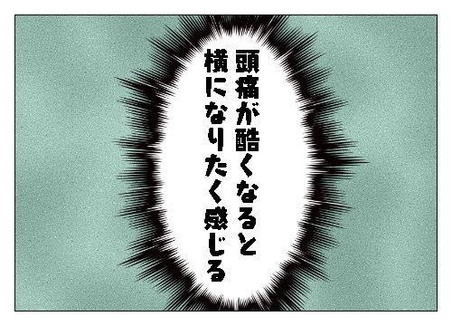 f:id:nekowamegusuri163:20191120152600j:plain