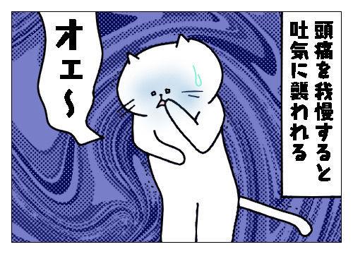 f:id:nekowamegusuri163:20191120152609j:plain