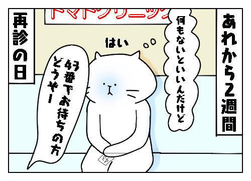 f:id:nekowamegusuri163:20191130080908j:plain