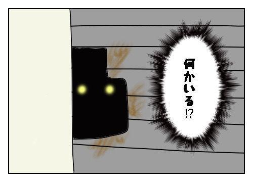 f:id:nekowamegusuri163:20200112155415j:plain