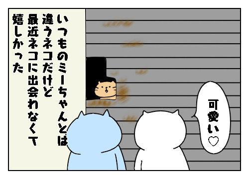 f:id:nekowamegusuri163:20200112155450j:plain