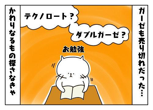 f:id:nekowamegusuri163:20200226100236j:plain