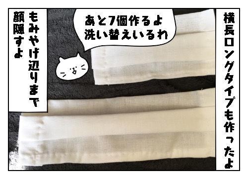 f:id:nekowamegusuri163:20200226100240j:plain